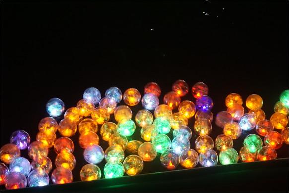 水面にゆらめく無数の光の玉! 名古屋・東山動植物園のイベント「夏のイルミネーション いのちむすぶ池」は極上の幻想世界