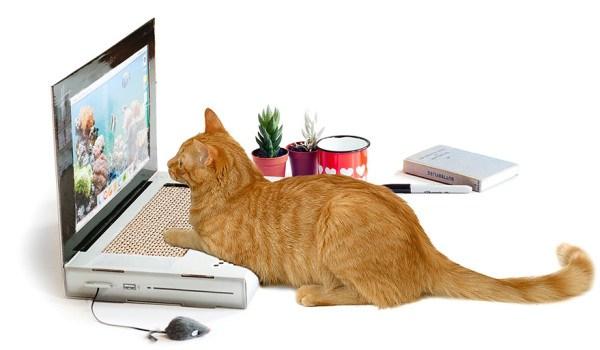 もう邪魔はさせないゾ! パソコンの上に乗りたがるネコ対策ツメ研ぎ「Cat Scratch Laptop」に期待が高まりまくりっ!!!