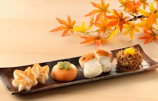 ええぇ和菓子じゃないの!? 仙台・笹かまの老舗から秋モチーフのかまぼこが登場 / 今年はおうちで紅葉狩りしちゃおっ