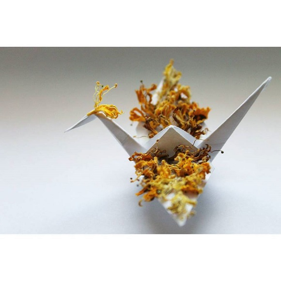 折り鶴を愛する外国人アーティストの作品が「美しすぎる!」と話題に…繊細なものからユニークなものまでバラエティに富んだ折り鶴アートをご覧あれ!