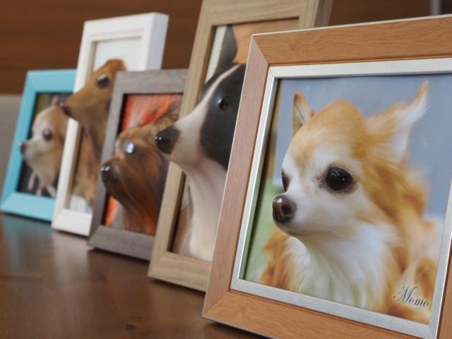 愛犬が顔を出してるみたい…リアルな「飛び出すフォトフレーム」が登場 / どんなワンちゃんでも写真があればオーダー可能ですって!