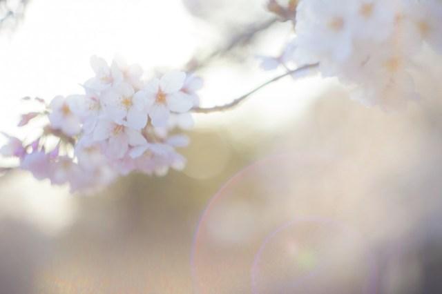 「9・28福山ショック」が止まらない!! いつまでも悲しんでいられないので、独身イケメン『希望の星』最新版を考えてみた☆