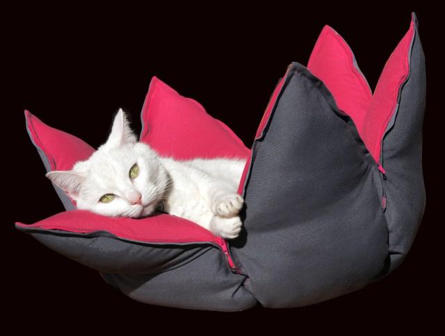 インテリアグッズみたいだニャン! ハスの花をモチーフにしたペット用ベッド「ネルンボ」がとってもオシャレだワン♪