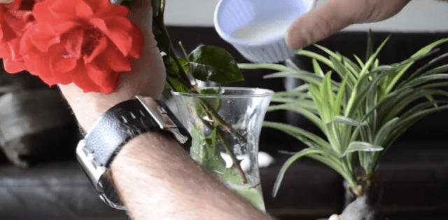 【ライフハック】お砂糖を使った驚きの便利テクニック / 「花瓶に入れる」「頑固な汚れに」など