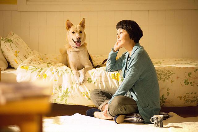 ペットを飼うなら必見! 映画『犬に名前をつける日』が深く切り込む「犬の殺処分問題」とは【最新シネマ批評】