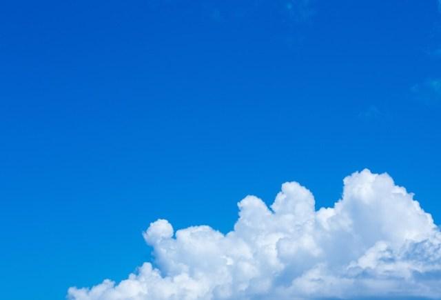 今年を象徴する色は澄んだ空にちなんだ「ブルースカイ・ブルー」なんだって! 来年のテーマカラーはどんな色かしら?