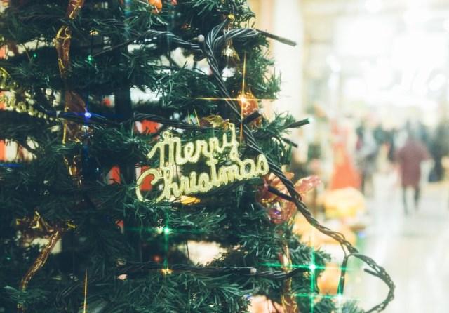 【メリクリ雑学】「なぜクリスマスツリーを飾るのか」知ってた? 知っているともっと楽しい『クリスマスにまつわる豆知識』をご紹介!!