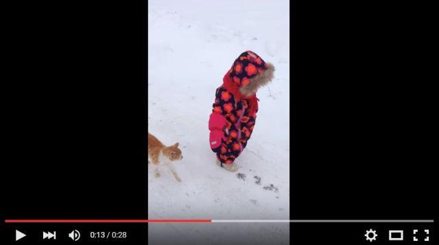 かわいい子どもとニャンコが雪道をテクテク歩いているよ / ニャンコのかまって欲しい願望がマックスに達した結果…!?