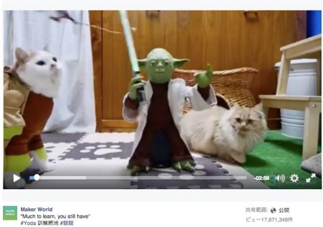 【スター・ウォーズと猫】ヨーダ様に対してこの態度…!特訓を受けるジェダイキャッツたちが「夢中になってくれないところがいいね!」とFacebookで話題