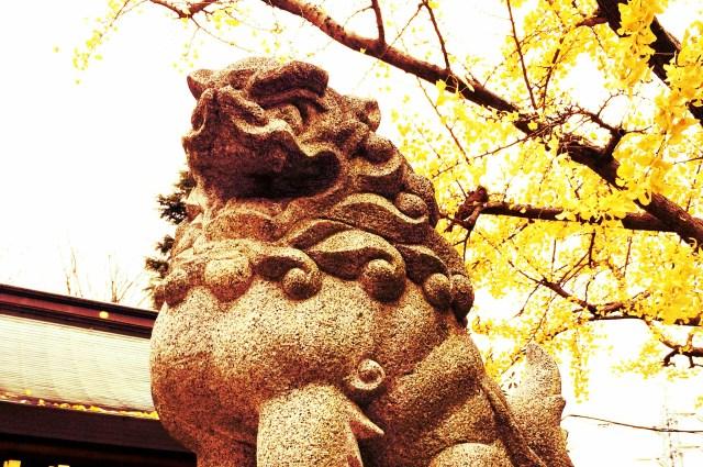"""1月4日は「石の日」なんだって! 狛犬や墓石などの """"石の物"""" に触れると願いが叶うそうです♪"""