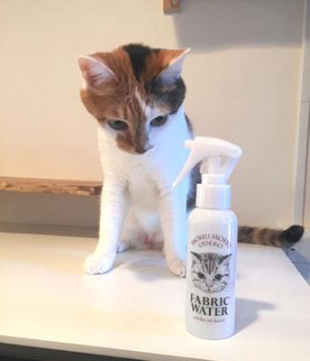 猫の「おでこ」の香りを再現!? 顔をうずめてモフモフクンクンした気になれる「ファブリックウォーター」が登場したよ!