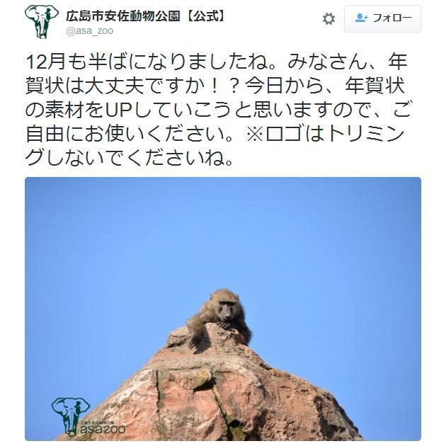"""申年の年賀状は「マンドリル」で決まりでしょ! 広島の動物園が """"サル画像"""" 年賀状素材を提供してくれているぞ〜!"""