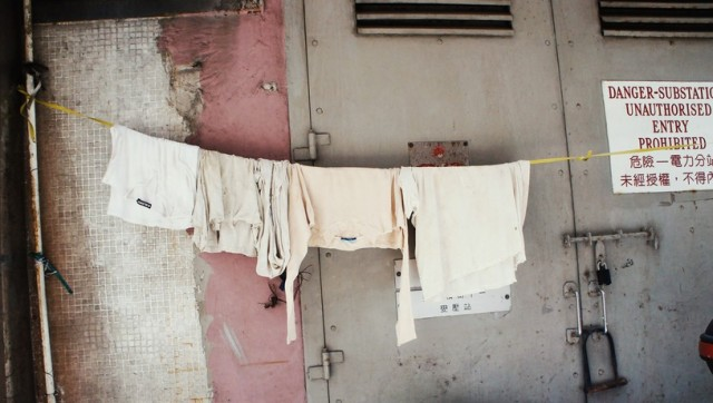 12月19日は「大洗濯の日」なんだって! いろんなものを洗濯しちゃお☆ スッキリとした気持ちで新年を迎えられそうです!