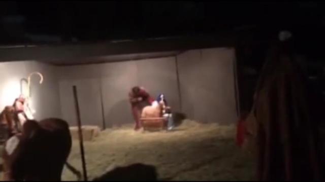 「私が神だよ」ってお前かい! イエス・キリストの誕生を描く舞台中にヤギがとった驚きの行動とは?
