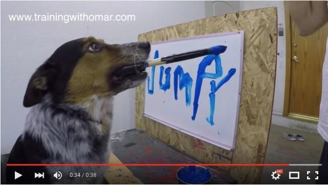 世界でいちばん賢い犬!? 自分の名前を筆でキャンバスに書いちゃうワンコがYouTubeで話題沸騰中!