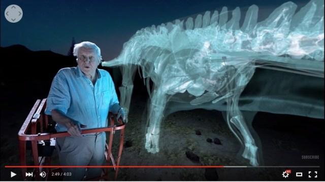 重さ70トンの恐竜ティタノサウルスをじっくり観察! 360度方向から観ることができるバーチャル・リアリティー動画が迫力満点!!