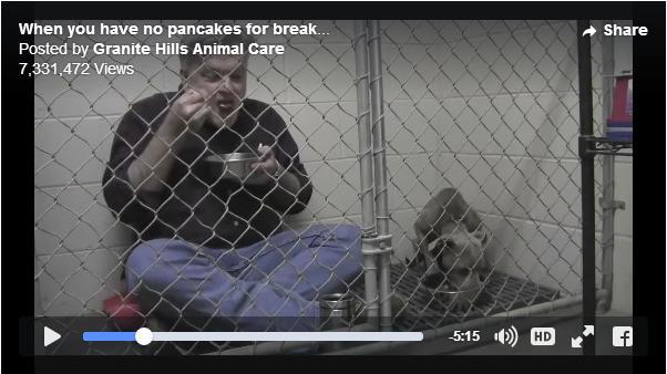 【感動】瀕死の状態にあったワンコを保護した獣医さん / おびえきった犬に対して彼がとった行動が話題に