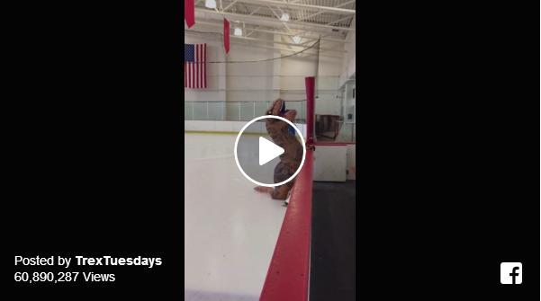 【じわじわ動画】地上最大級の肉食恐竜・ティラノサウルスが「アイススケート」に挑戦してみた結果