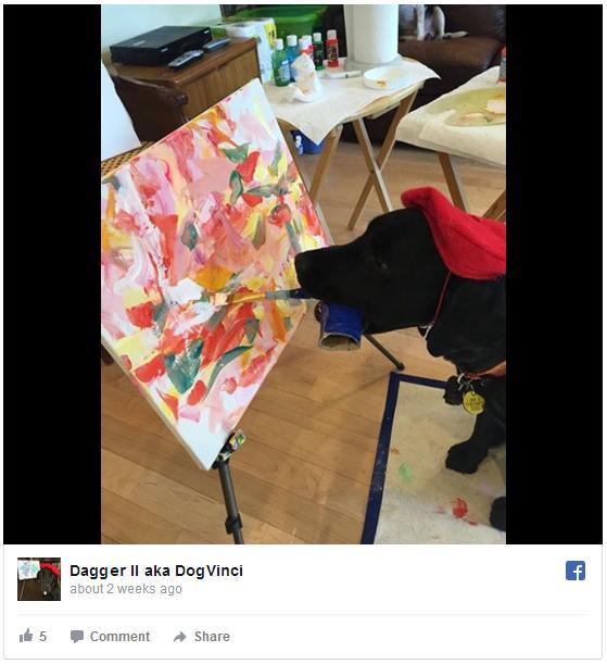 """【天才発見】ダヴィンチならぬ """"ドッグヴィンチ"""" が現れた! カラフルな抽象画を描くワンコがすごい"""