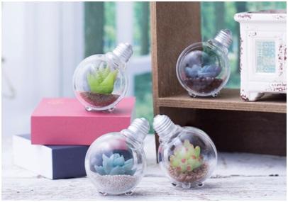 300円でこれは買い! 水をあげなくても枯れない「豆電球型インテリアグリーン」のガシャポンが可愛くてオシャレ☆