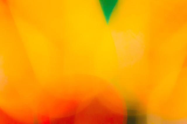 4月14日は「オレンジデー」っていうカップルの記念日なんだよ! オレンジ色のものをプレゼントして愛を確かめ合う日♪