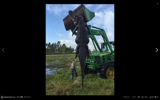【デカいにもほどがある】フロリダのハンターが超巨大アリゲーターを捕獲! その大きさに驚くも、野生動物をめぐる議論に発展しているみたい?