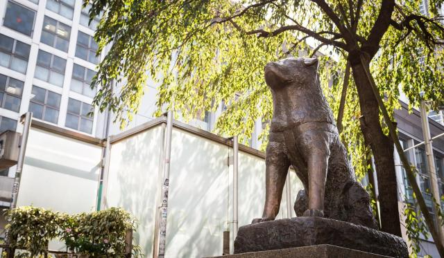 4月8日は「忠犬ハチ公の日」なんだよぉ~! どうしてハチ公の銅像って渋谷駅前にあるのか知ってる?