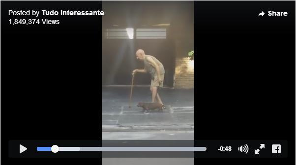 おじいさんの歩くペースに合わせるワンコの姿にジーン…ゆっくりゆっくり時間が流れる超スローなお散歩動画