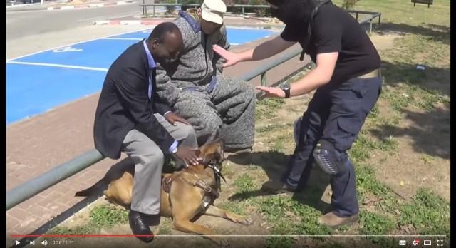 賢いワンコっていうレベルじゃないぞ!? 高度な訓練を受けた警察犬の「要人守護」の判断力と素早い反応に感動!