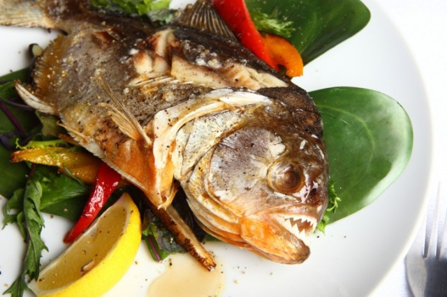 ピラニア、ワニ、サメを使った料理が期間限定で食べられる!! マニアに人気の肉バルで「水の肉食生物フェア」開催中!