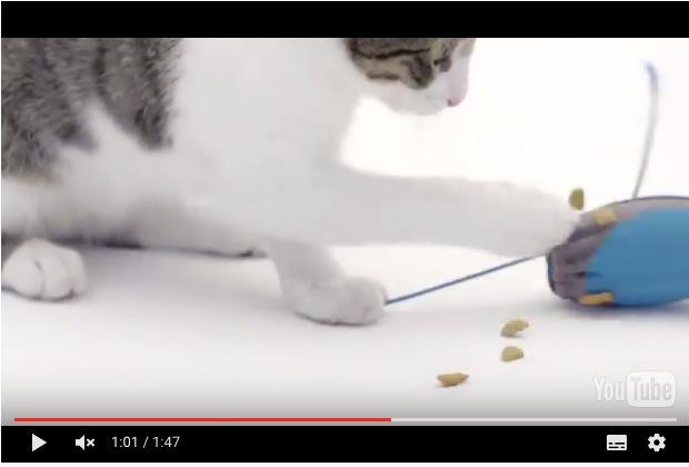ネズミ型の「猫の自動エサやり機」が便利そう! ネコちゃんの捕食本能を満たしてくれる画期的な発明品であります
