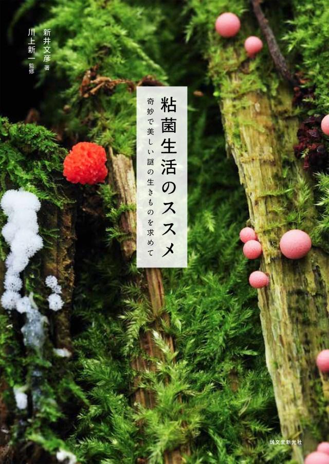 めくるめく粘菌ワールドへようこそ!? 不思議でカワイイ魅力をめいっぱい紹介した本『粘菌生活のススメ』が発売!