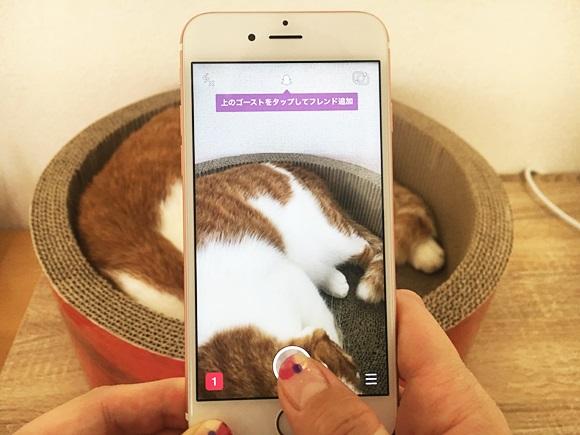 【柄猫は注意】話題の「SnapChat」でお昼寝中のトラ猫と遊んでみた結果…心霊写真しか撮れなかった件☆