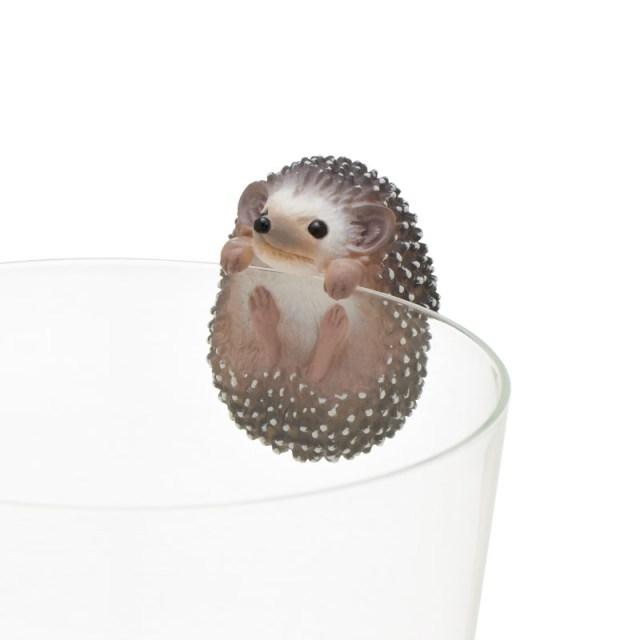 チクチクかわいいハリネズミがコップのフチに舞い降りたっ! よじ登ったり垂れ下がったり、愛くるしい魅力が炸裂