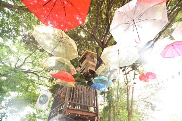 雨の日もハッピー! 100本の傘が埋め尽くす「傘の森」が千葉に出現 / まるで絵本の世界みたいでステキだよ♪