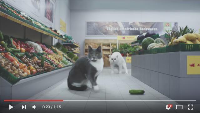 猫さんたちがスーパーマーケットでお買い物♪ 名作動画のパロディーシーンが続々出てくるCMを発見したニャ!