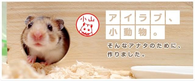 ほお袋がパンパンだよぉ~! ハムスターのイラスト入りハンコを作れちゃうゾ / ハリネズミやモモンガやコツメカワウソもいるよ♪