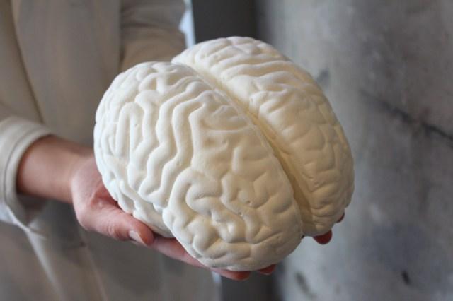 プルプル感がリアル! 今年のハロウィンは実物大の「脳みそマシュマロ」でみんなを驚かせちゃおう!!