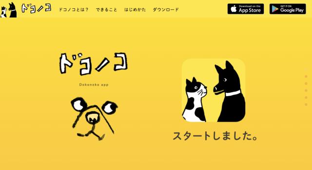 ニャンコ・ワンコ版のInstagram!? ペットの写真&SNSアプリ「ドコノコ」が動物好きの間で大盛り上がりだよ!!
