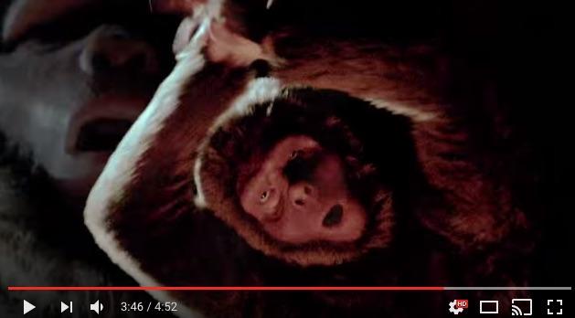 【ジワる】RADWIMPSの新曲『前前前世』MVに登場する猿の存在感が強すぎ〜! 「猿になってもみんな面影あるのがまたおもしろい」との声も