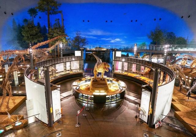 【限定2組】恐竜たちに見守られて永久の愛を誓う! 福井県立恐竜博物館で結婚式を挙げられるプラン『ダイノ・ウェディング』