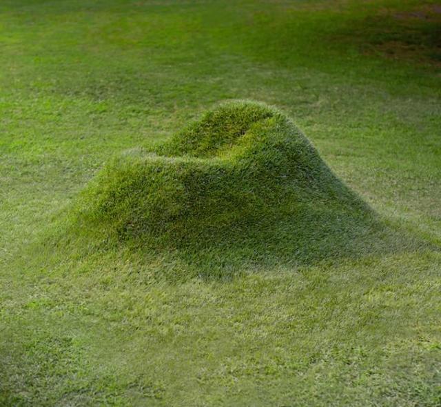 芝生の山かと思ったら…実はアームチェア! イチから芝生を育てれば愛着もひとしお?