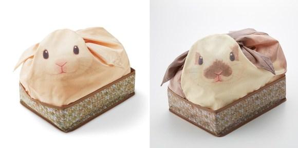 ミニウサギとホーランドロップイヤー