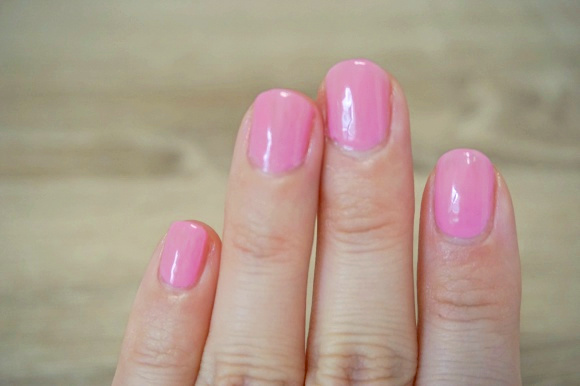 steadynailreview14
