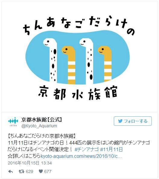 11月11日はポッキーの日だけど「ちんあなごの日」でもあるのだ! 『ちんあなごだらけの京都水族館』が開催されるよ