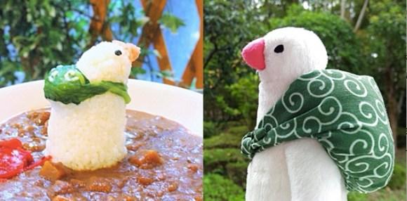 furoshiki_curry