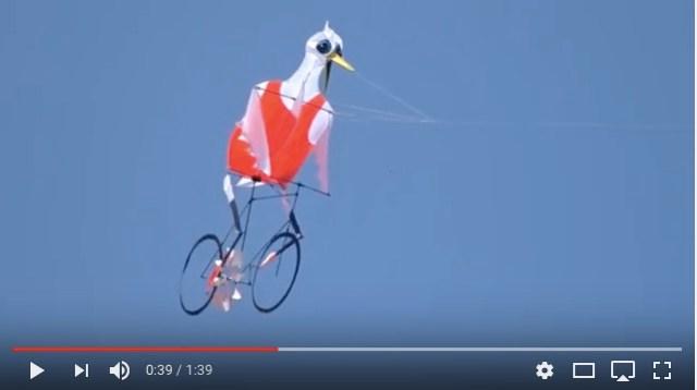 自転車をこいで空を飛ぶ鳥人間!? シュールでキモかわいい…すさまじいインパクトを放つ正体はタコ