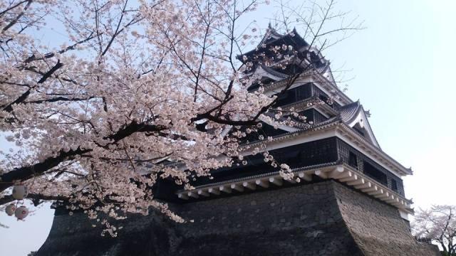 2016年流行語大賞で特別賞を受賞した熊本城の「復興城主」って知ってる? 1万円以上の寄附で城主証がもらえます