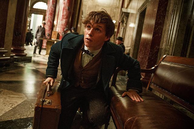ハリーポッターの魔法の世界が再び! 新シリーズ『ファンタスティック・ビーストと魔法使いの旅』のニュートはハリーを超える?【最新シネマ批評】