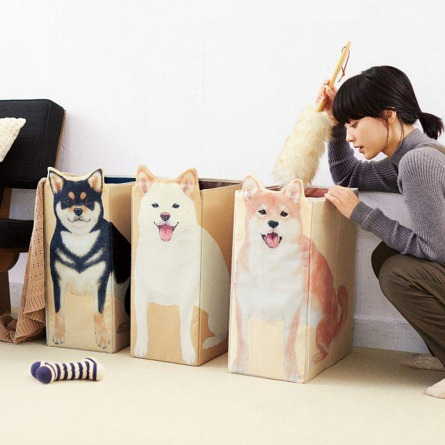 ご主人さまの帰りを待ってるワン♪ 「柴犬収納ボックス」なら柴犬の多頭買いだってできちゃうんだからっ!!!